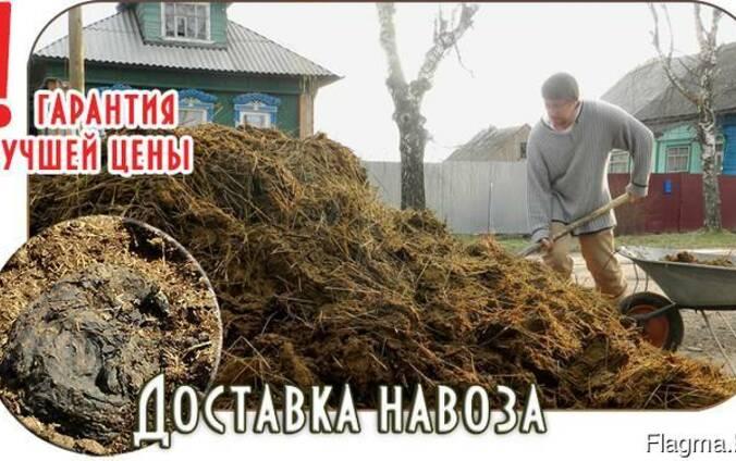 Недорого! Навоз, ПГС, Песок, Гравий, Солигорск Самосвал 20т