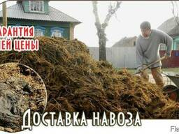 Недорого! Навоз, ПГС, Песок, Гравий, Солигорск Самосвал 20т - фото 1