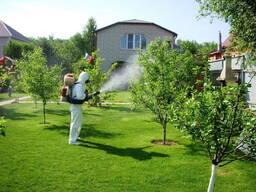Обработка сада (Опрыскивание) от вредителей
