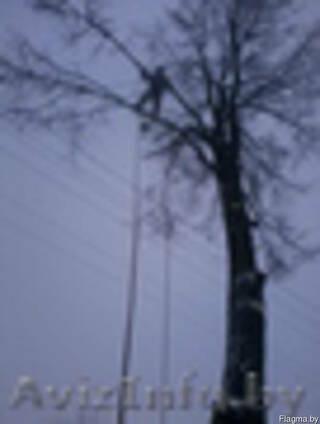 Обрезка деревьев(омолаживающая, формовочная, санитарная)