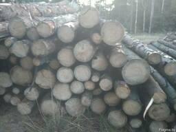Окажем услуги по заготовке и вывозке леса