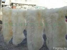 Оптовая продажа выделанных натуральных овечьих шкур