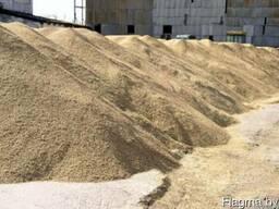 Организация закупает рапс и зерно(ячмень,пшеницу,рожь)