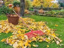 Осенняя обработка деревьев, кустов от вредителей, болезней, грибов. Побелка деревьев.