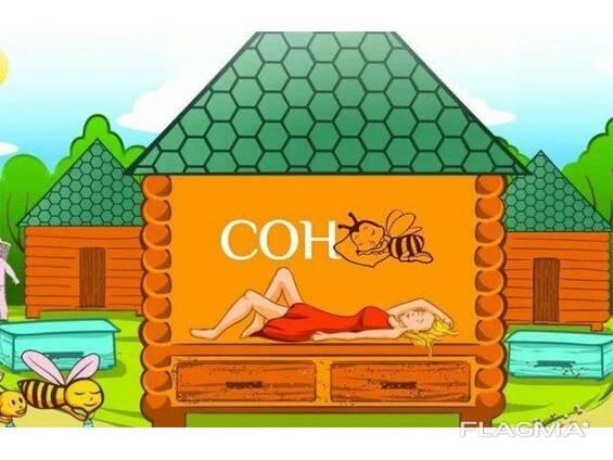 Оздоровительный сон на пчелах. Апитерапия