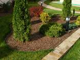 Озеленение и благоустройство участка - фото 5