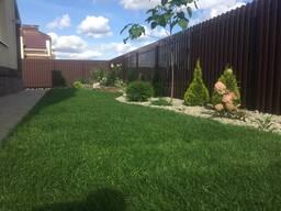 Рулонный газон. Посевной газон. Автополив. Озеленение
