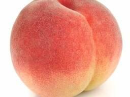 Персиковое пюре 30-32 % , Чили