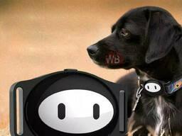 PET GPS Tracker для питомцев