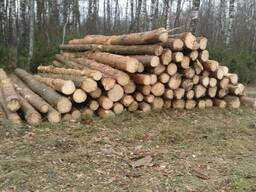 Пиловочные лесоматериалы