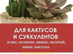 Почвогрунт для кактусов и суккулентов 2, 0 л