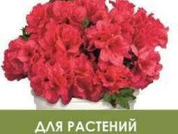 Почвогрунт для растений кислых почв 4, 5 л.