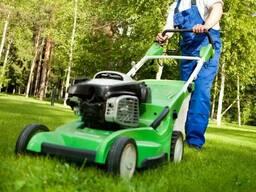 Покосить траву, бурьян. Подстричь газон.
