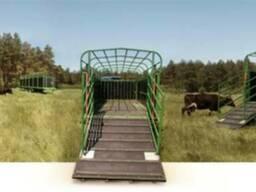 Полуприцепы для перевозки скота Kurier 6 / Скотовоз Kurier 1