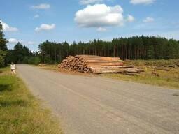 Продам круглый лес, техсырьё от 14