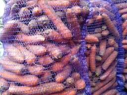 Продам морковь оптом не мытая - фото 2