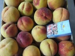 Продам персики Молдова в наличии