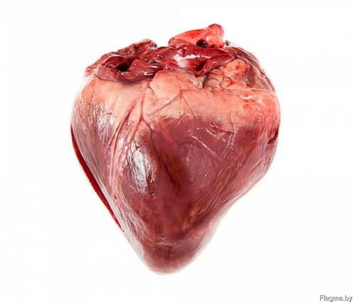 Продам свиное сердце