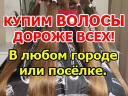Продать волосы Полоцк, Новополоцк. Куплю волосы. Скупка воло