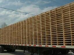 Продажа деревянных поддонов, б/у и новых на экспорт и по рб