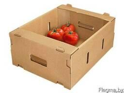 Производство лотков под овощи и фрукты из гофрокартона