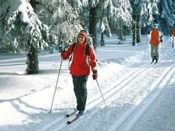 Прокат лыж Жлобин
