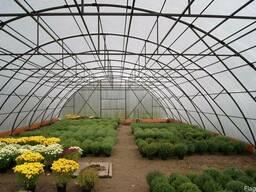 Промышленные фермерские теплицы под поликарбонат - фото 2