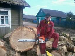 Распилить на дрова 30, 40 см. Заготовка древесины, складиров - фото 2