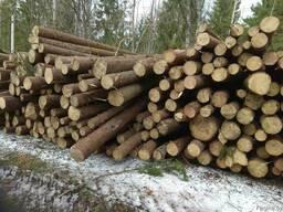Распиловка леса
