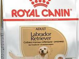 Royal Canin Labrador Retriever Adult - корм для взрослых Лабрадоров с 15 месяцев.