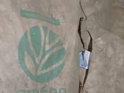 Семена кукурузы 12 тонн