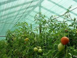 Сетка для фермера, овощевода, садовода, огородника