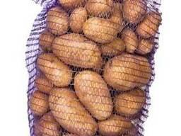 Сетка овощная - 10 кг