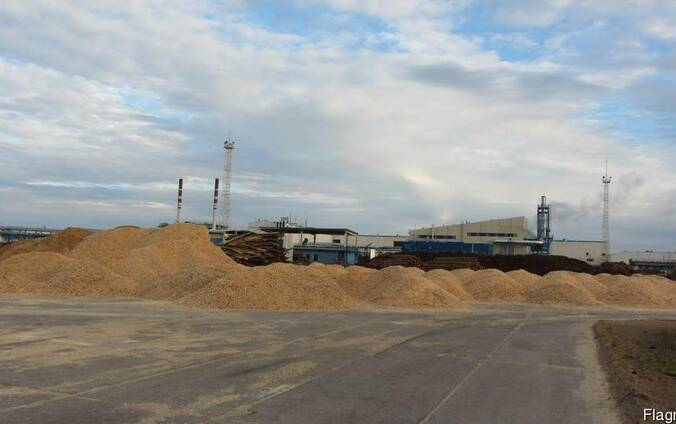 Щепа топливная сосна БУТБ экспорт DAF-Латвия