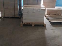 Щит мебельный (массив) из березы