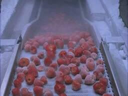 Шоковая заморозка ягод, грибов, овощей в туннеле.