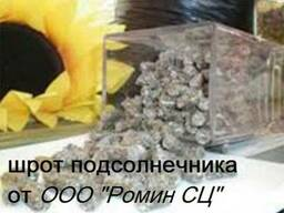 Шрот подсолнечника , Россия