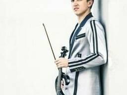 Скрипка скрипач на праздник