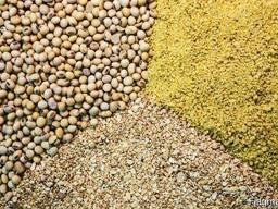 Соевый шрот без ГМО, протеин 52