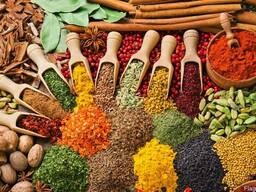 Специи,пряности,сушеные ягоды и овощи,сухофрукты,пищ.добавки