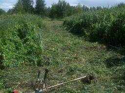 Стрижка газона