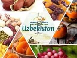 Сухофрукты из Узбекистана
