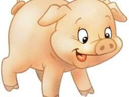 Свинина домашняя. Из деревни.
