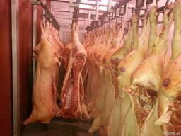 Свинина в полутушах Белорусских предприятий. - фото 4