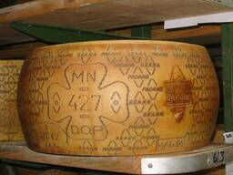 Сыр Грана Падано головы, выдержка 12 месяцев