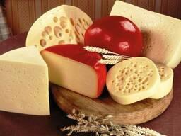 Сыр полу-твердый 45-50%