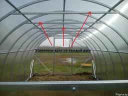 Теплица из поликарбоната (Импласт-Премиум). (0. 64см)(3х4м)