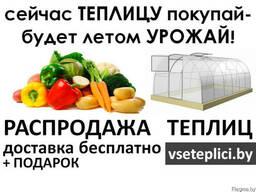 Теплицы для хорошего урожая