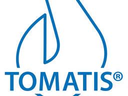 Томатис-терапия