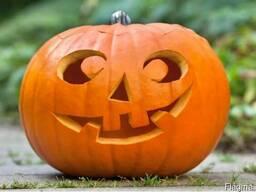 Тыква отборная на Хеллоуин #halloween#